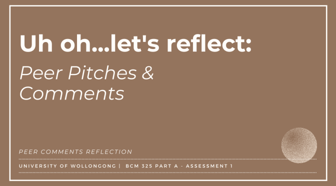 Uh oh…let's reflect: Peer Pitches & Comments