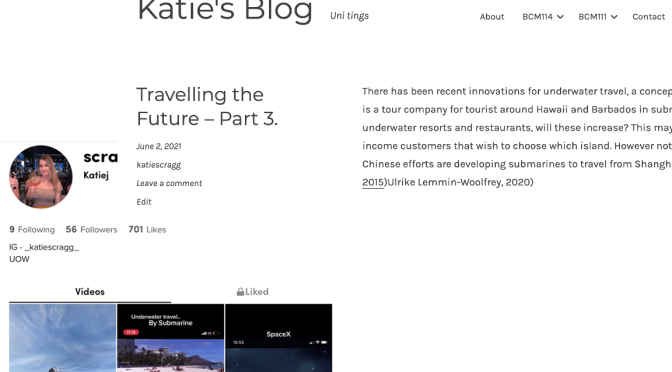 FINAL DA Report- 'Travelling the Future'